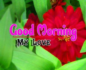 Best Spcieal Good Morning HD Download