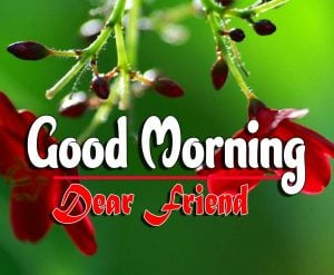 Best Spcieal Good Morning HD Images