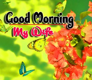 Best Spcieal Good Morning HD Photo