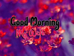 Best Spcieal Good Morning Images Free