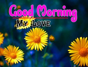 Best Spcieal Good Morning Images Free Hd