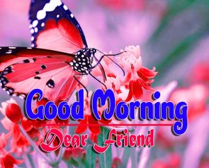 Best Spcieal Good Morning Photo Free