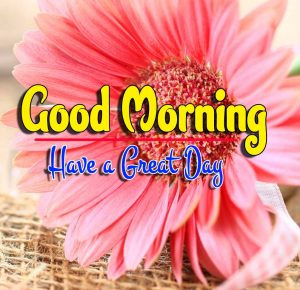 Best Spcieal Good Morning Photo Hd