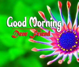Best Spcieal Good Morning Pictures