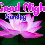 Best Sunday Good Morning Pics New Download