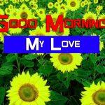 Best Sunflower Good Morning wallpaper