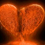 Cool Heart Images For Whatsapp Dp Images Download