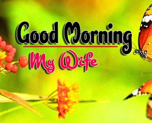 Cute Good Morning For Whatsapp Hd Images