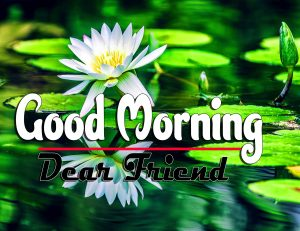 Cute Good Morning For Whatsapp Images
