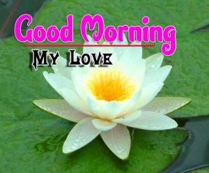 Cute Good Morning For Whatsapp Photo