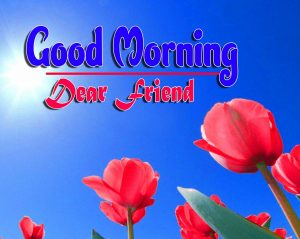 Cute Good Morning For Whatsapp Photo Free Download