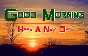 Cute Good Morning HD Free Pictutres