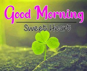 Cute Good Morning Images Wallpaper Hd