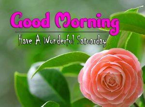 Cute Good Morning Saturday Pics Hd