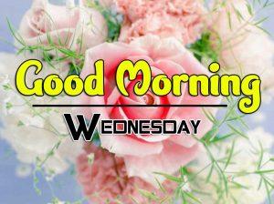 Cute Good Morning Wednesday