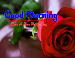 Cute Good Morning Wednesday Images