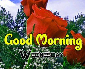 Cute Good Morning Wednesday Pics Hd