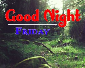 Cute Good Night Friday Free