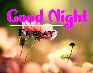 Cute Good Night Friday Wallpaper