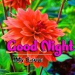 Cute HD Good Night Images pics free hd