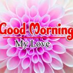 Flower Download HD Good Morning Pics