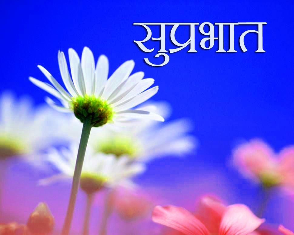 Flower Suprabhat Images Wallpaper Download