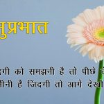 Free Flower Hindi Quotes Good Morning Images Pics Download