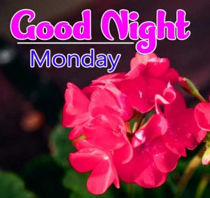 Free New good night monday images Pics Download