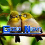 Fresh Good Night Images Wallpaper HD