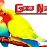 Best Quality Fresh Good Night Images Pics Download