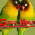 Free Fresh Good Night Images Wallpaper Download