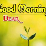 Full HD Good Morning Images pictures photo hd