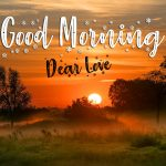 Good Mornign Photo Download Free