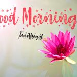 Good Mornign Pictures New Download