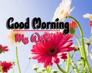 Good Morning For Facebook Download Hd