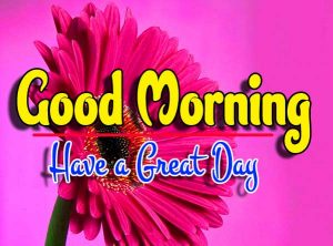 Good Morning For Facebook Download Photo