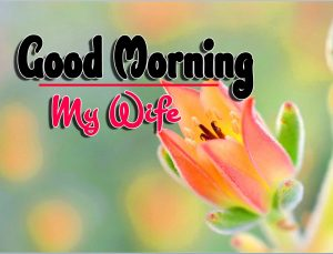 Good Morning For Facebook Images Pictures