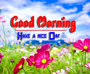 Good Morning For Facebook Pics Photo Free