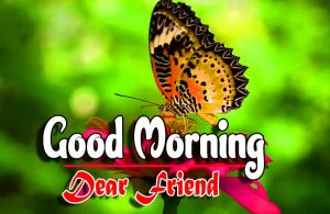 Good Morning For Facebook Pictures Download