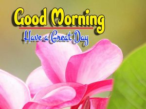 Good Morning For Facebook Pictures Free Hd