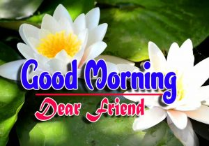 Good Morning For Facebook Pictures Wallpaper