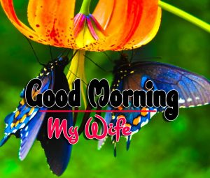 Good Morning For Facebook Wallpaper Pictures