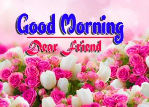 Good Morning For Whatsapp Download