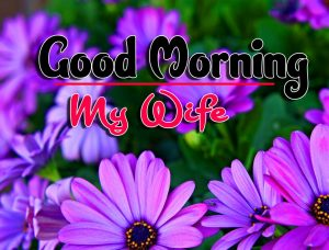 Good Morning For Whatsapp Download Images