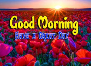 Good Morning For Whatsapp Free