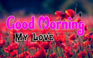 Good Morning For Whatsapp Images