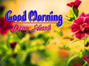Good Morning For Whatsapp Images Hd