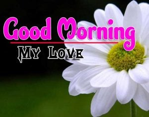 Good Morning For Whatsapp Images Pics