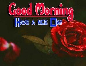 Good Morning For Whatsapp Photo Free