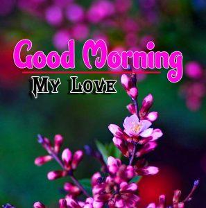 Good Morning For Whatsapp Photo Wallpaper